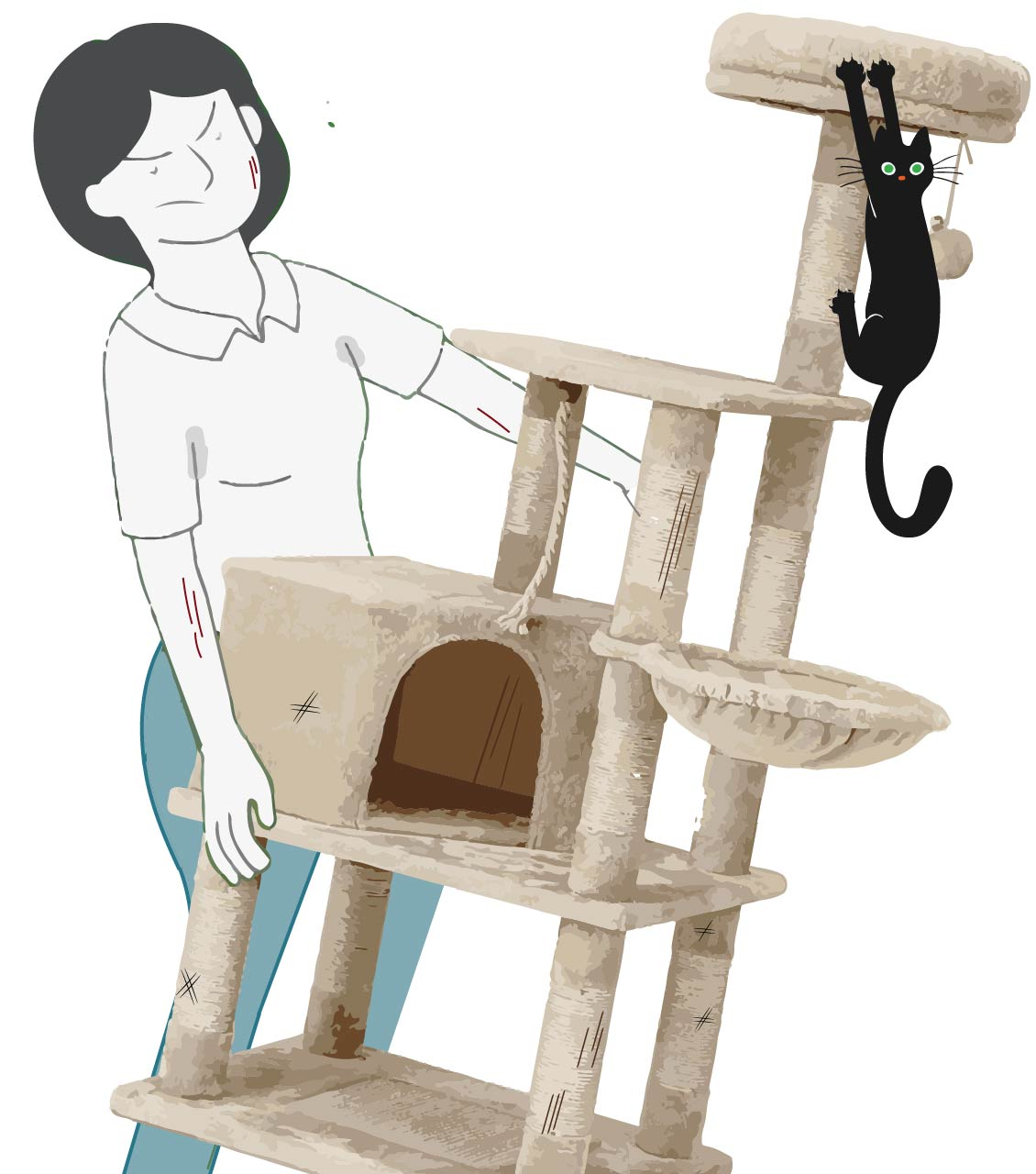 Cat Tree Disposal Services