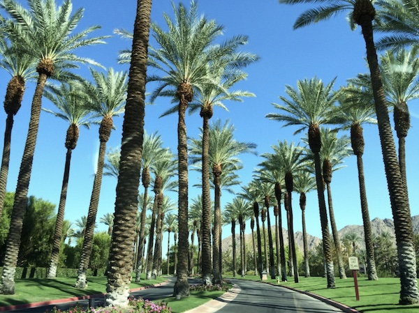 Palm Springs Junk Removal Leads